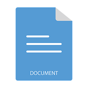 document file invoice